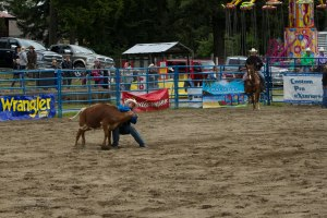Rodeo-243